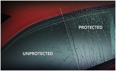Glass Protection - Used Cars of Bristol